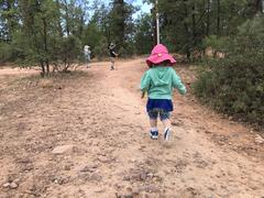 Three little hikers on a dirty path