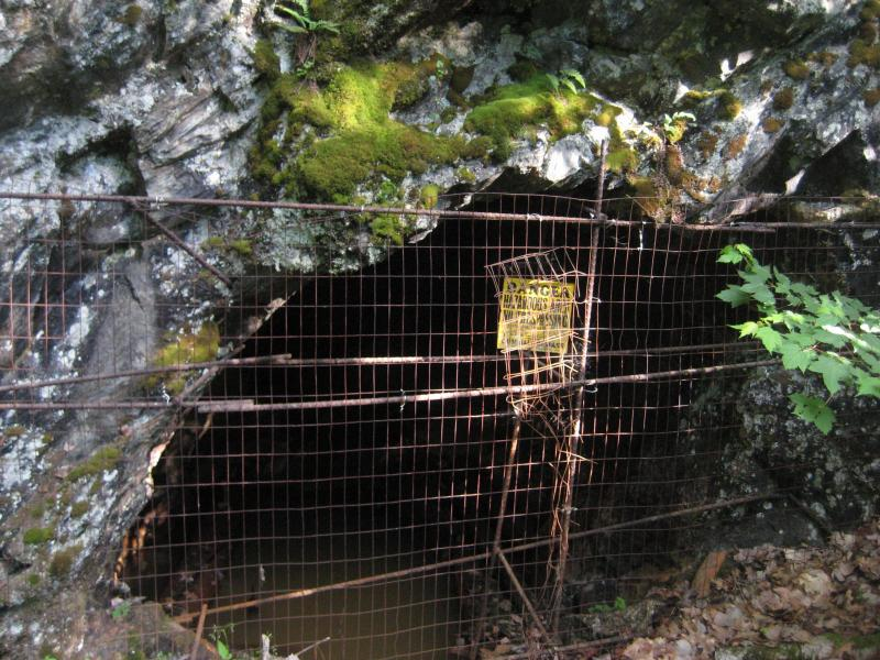 Mine Shaft from the old Silver Lead Mine