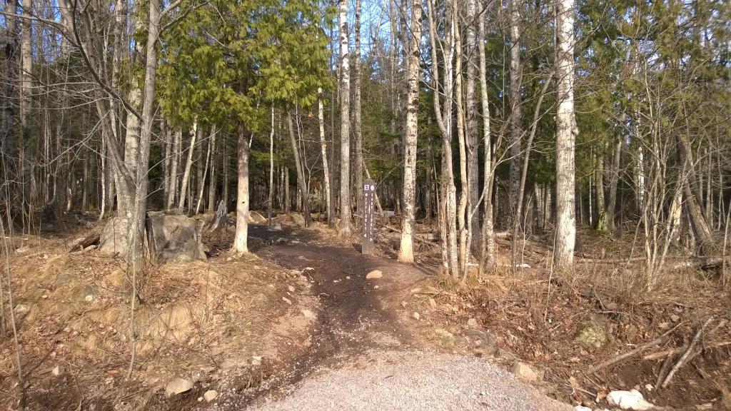 Blog | Spring Visit to Sugarloaf