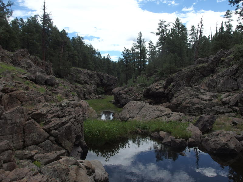 Pools and rugged rocks at Pomery Tanks
