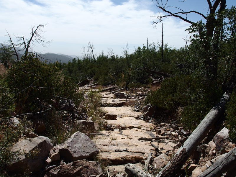 Hot trail along the Deadman Creek crossing