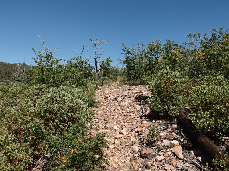 Loose rocks along Mazatzal Divide Trail