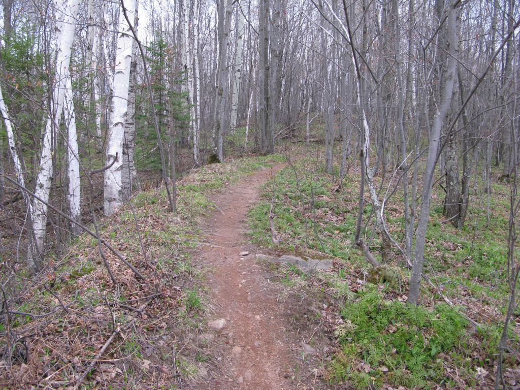 Blog | Lakes of Tilden Mine