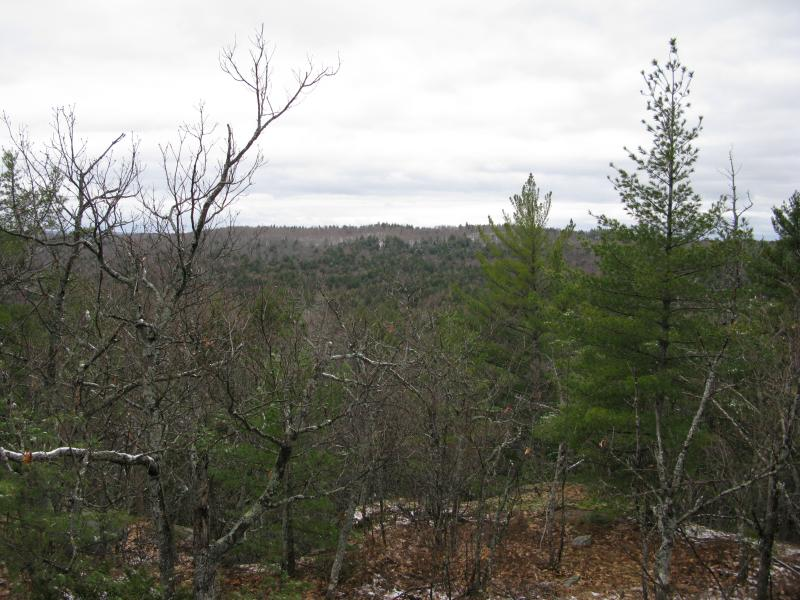 Partial views south over Mink Run