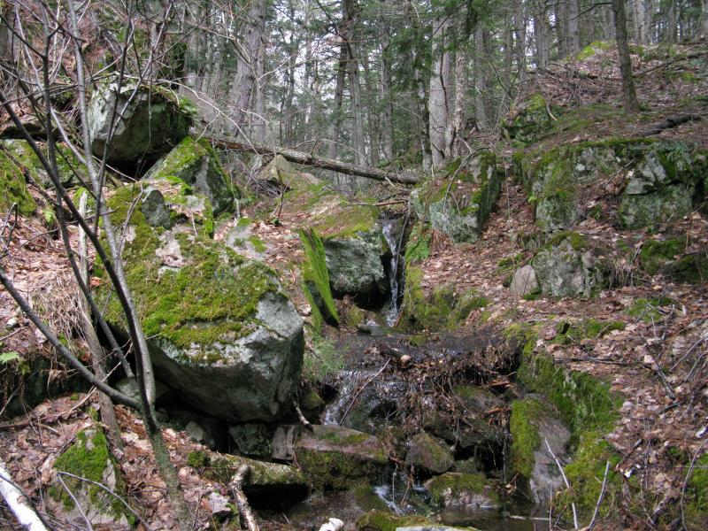 Mossy rocks and falling water