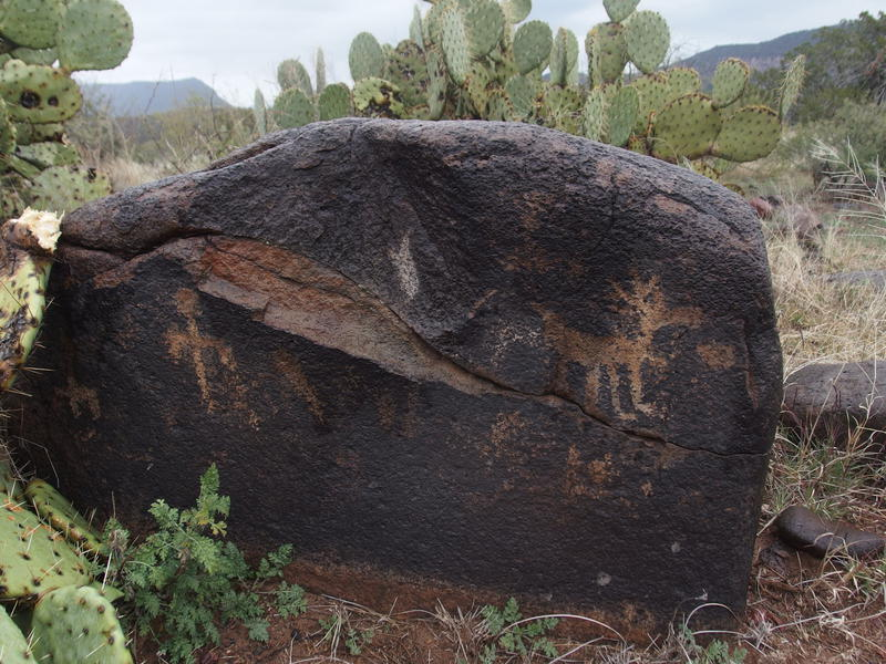 Some surprise petroglyphs along the trail