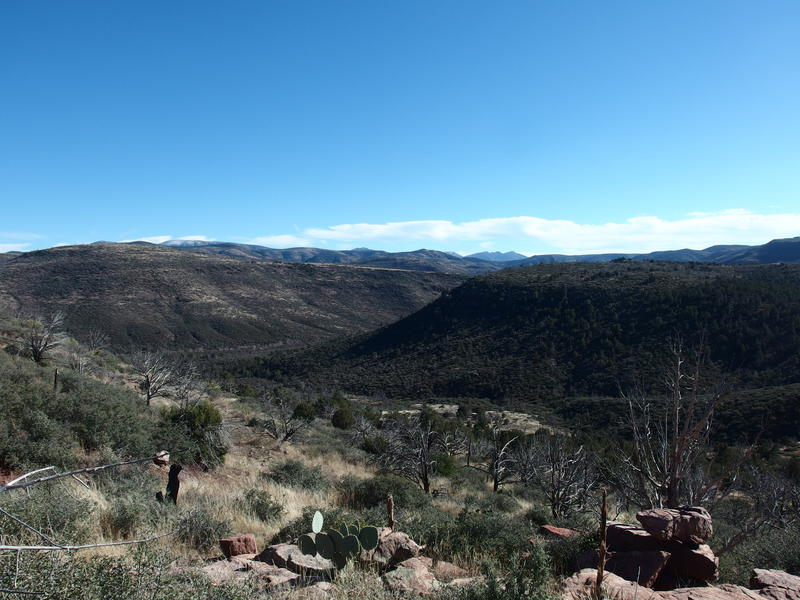Last view back over Bull Spring Canyon