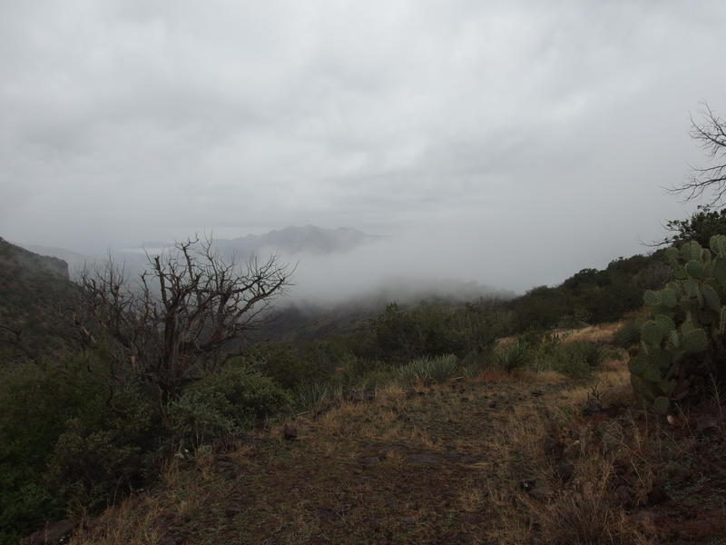 Low clouds drifting into the Verde