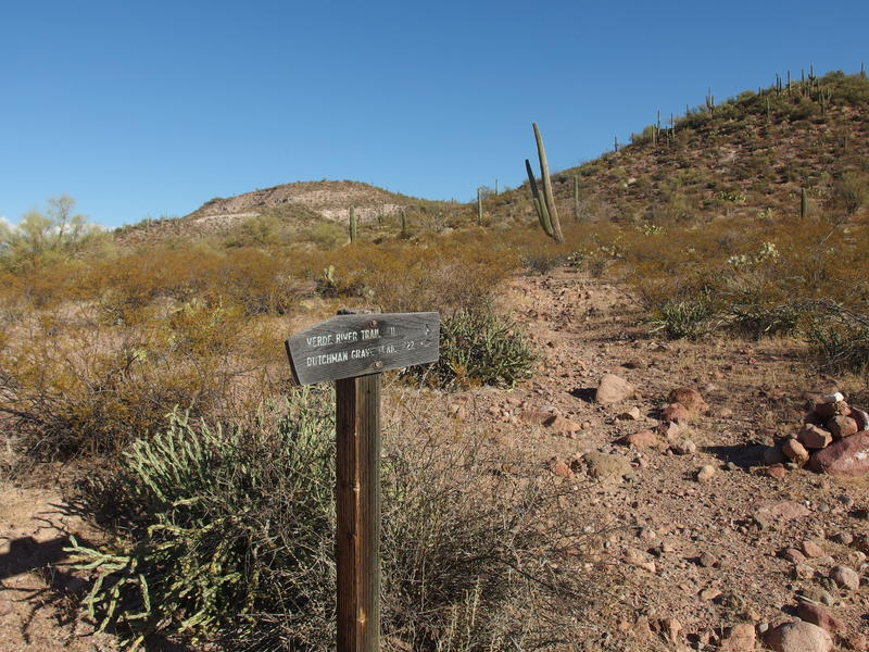 Further along Verde River Trail