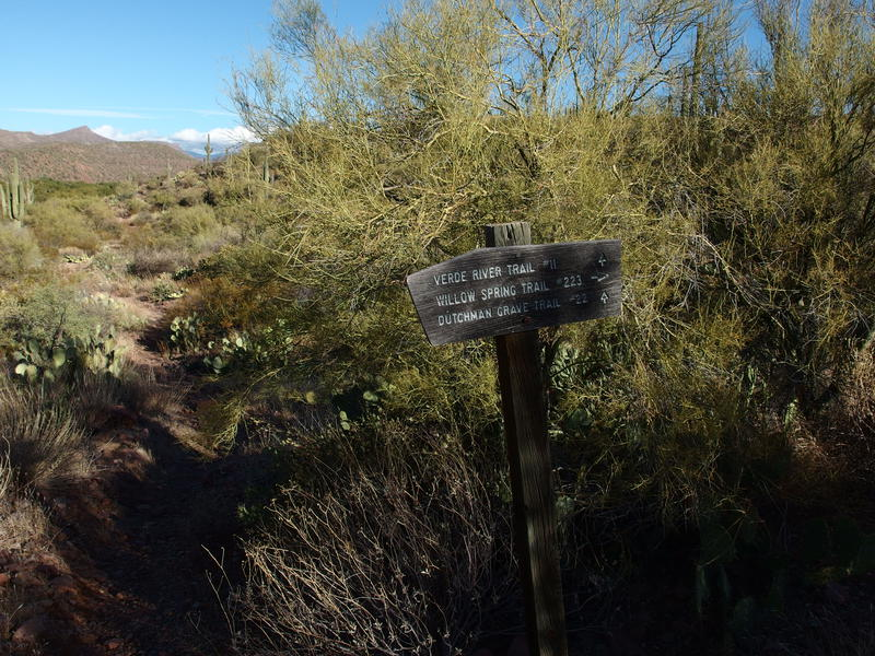 Trail sign for the Willow Spring / Verde River junction
