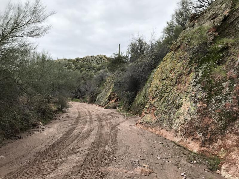 ORV tracks in Willow Canyon